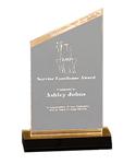 """5C3104 - 5C3104 - 6"""" Reflection Acrylic Award"""